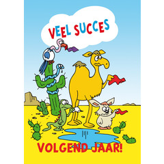 Diploma 1053 veel succes zomer