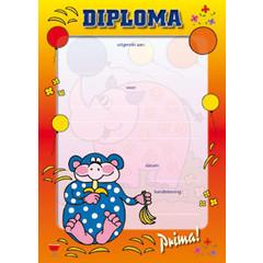 Diploma 1055 aap