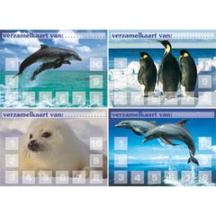 Verzamelkaarten  zeedieren