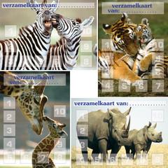 Verzamelkaarten wilde dieren