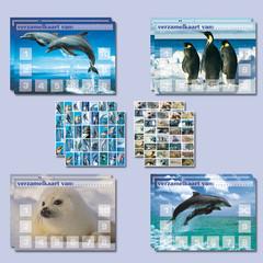 Beloningspakket dolfijnen en pooldieren