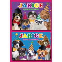 A5 Grote kaarten honden gefeliciteerd