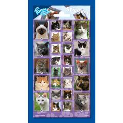 Stickers  kattenafbeeldingen