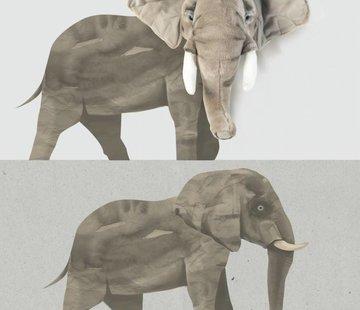Wild & Soft Wall sticker, Elephant Wild & Soft