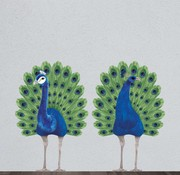 Wild & Soft Wall sticker: peacock