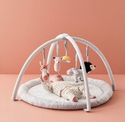 Kid's concept BabyGym, Edvin