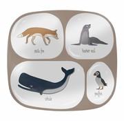Sebra Melamine plate with 4 compartments Artic Animals Sebra