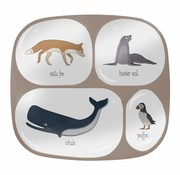 Sebra Melamine verdeelbord-Artic Animals-Sebra