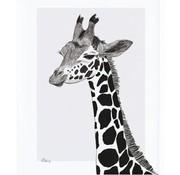 Lilipinso Kader met giraffe