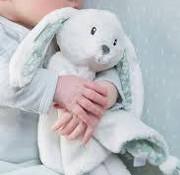 Little Dutch Cuddly rabbit mint
