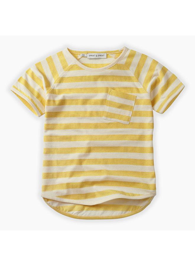 Shirt Raglan Stripe