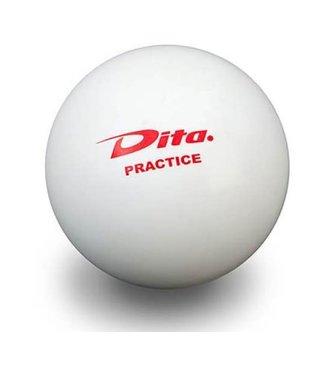 Dita Dita Hockeybal Practice