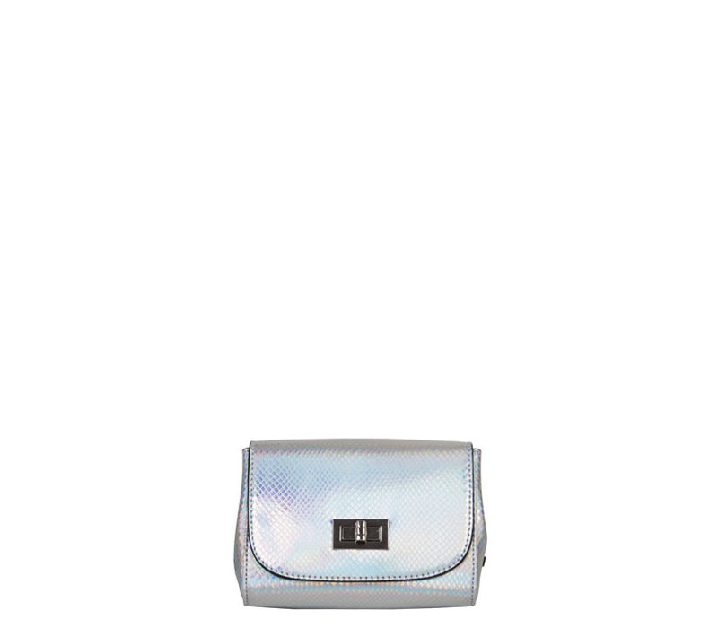 Crossbody bag Fern (silver)