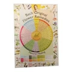 Bach remedies poster A2 (1 stuks)