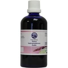 Nagel Pau d'Arco tinctuur (100 ml)