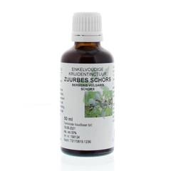 Natura Sanat Berberis vulgaris / zuurbes wortel tinctuur (50 ml)