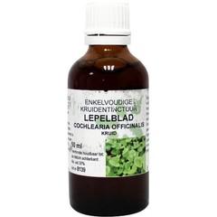 Natura Sanat Cochlearia officinalis / lepelblad tinctuur (50 ml)