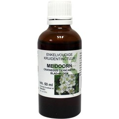 Natura Sanat Crataegus oxyacantha / meidoorn tinctuur (50 ml)