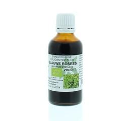 Natura Sanat Vaccinium myrt / blauwe bosbesvrucht tinctuur bio (50 ml)