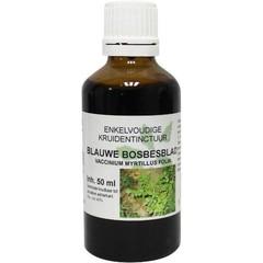 Natura Sanat Vaccinium myrt / blauwe bosbesblad tinctuur (50 ml)