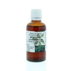 Natura Sanat Thuja occidentalis / levensboom tinctuur (50 ml)