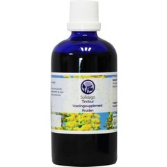 Nagel Solidago tinctuur (100 ml)