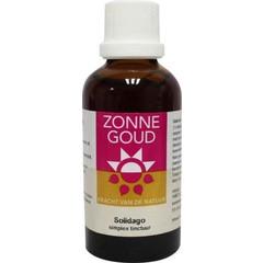 Zonnegoud Solidago simplex (50 ml)