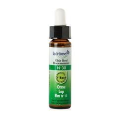 Ladrome Elm / iep 30 (10 ml)