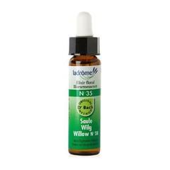 Ladrome Willow / wilg 35 (10 ml)
