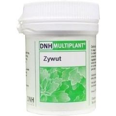 DNH Zywut multiplant (140 tabletten)