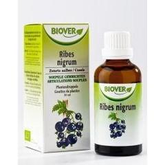 Biover Ribes nigrum (50 ml)