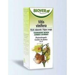 Biover Vitis vinifera (50 ml)