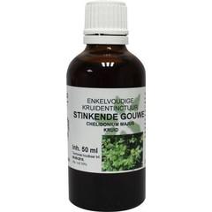 Natura Sanat Chelidonium majus / stinkende gouwe tinctuur bio (50 ml)