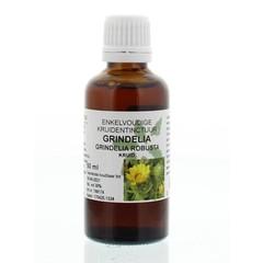 Natura Sanat Grindelia robusta herba tinctuur (50 ml)