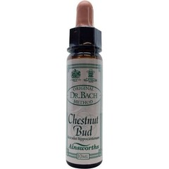Ainsworths Chestnut bud Bach (10 ml)