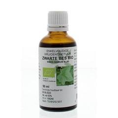 Natura Sanat Ribes nigrum / zwarte bes tinctuur bio (50 ml)