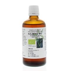 Natura Sanat Acorus calamus / kalmoeswortel tinctuur bio (100 ml)