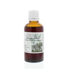 Natura Sanat Eucalyptus globulus folia tinctuur (50 ml)