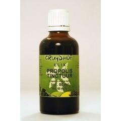 Natura Sanat Levisticum officinalis rad / lavaswortel tinctuur (1 liter)