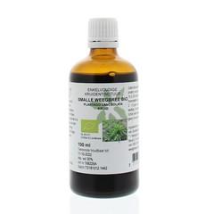 Natura Sanat Plantago lanc / smalle weegbree tinctuur bio (100 ml)