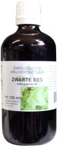 Natura Sanat Natura Sanat Ribes nigrum / zwarte bes tinctuur bio (100 ml)