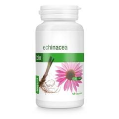 Purasana Bio echinacea 215 mg (120 vcaps)