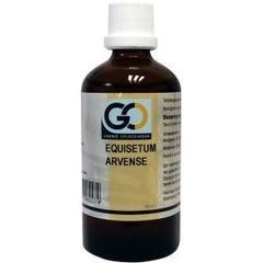 GO Equisetum arvense (100 ml)