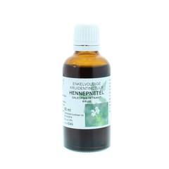 Natura Sanat Galeopsis tetrahit herb / hennepnetel tinctuur (50 ml)