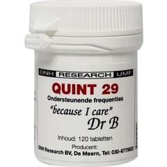 DNH Quint 29 (120 tabletten)