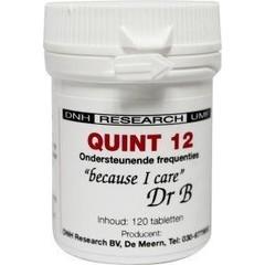 DNH Quint 12 (120 tabletten)