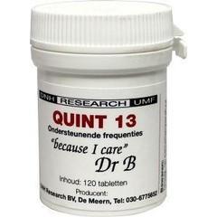 DNH Quint 13 (120 tabletten)