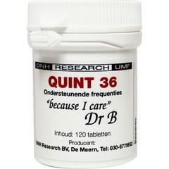 DNH Quint 36 (120 tabletten)