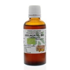 Natura Sanat Curcuma longa / geelwortel tinctuur bio (50 ml)