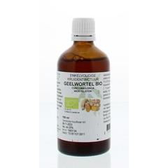 Natura Sanat Curcuma longa / geelwortel tinctuur bio (100 ml)